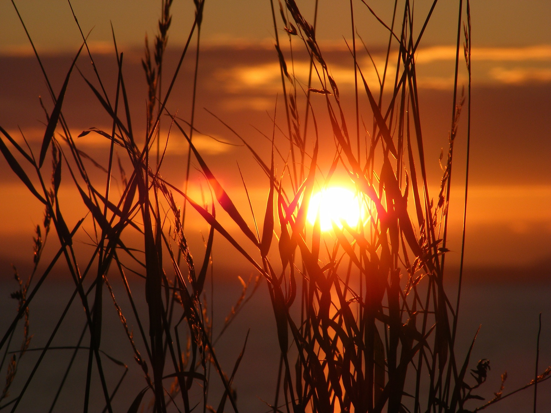 sunset-657148_1920
