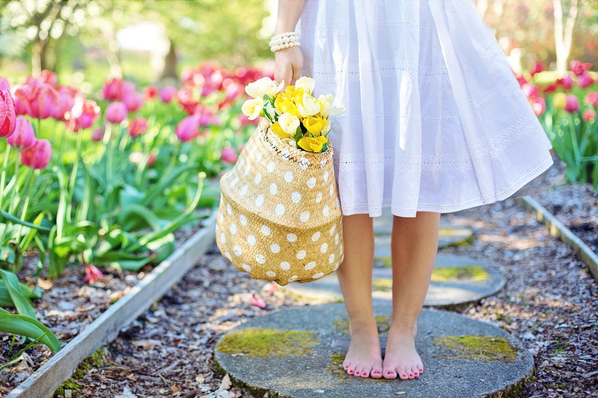 spring-2298279_1920